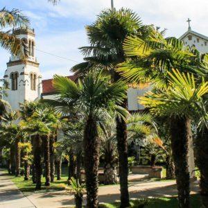 Santa Barbara City Council Opposes 5G Citing Health Risks
